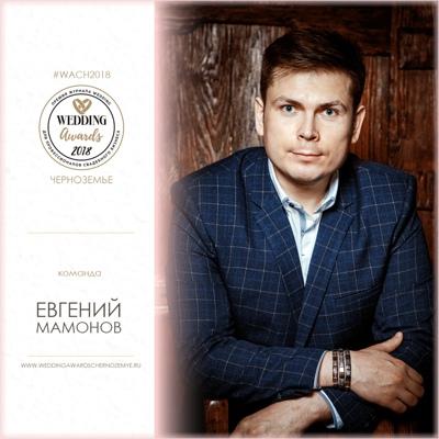 Евгений Мамонов, Воронеж