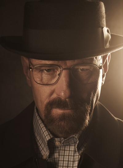 Mister Heisenberg, Стебник