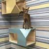 Catissa - подвесные домики для кошек