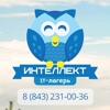 IT школа-лагерь «Интеллект»   Татарстан