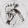 Кура Лапой   Прописи для коррекции почерка
