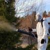 Защита и Избавление  от насекомых и грызуновХМАО