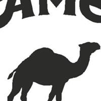 CamelMotors