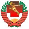 Национальная лига спортивной медицины