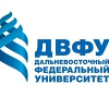 Центр изучения иностранных языков ДВФУ