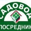 Шодмон Ёдгоров