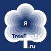 Родословная. Генеалогическое дерево