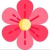 Доставка цветов в Кургане - ФЛОРИСТ