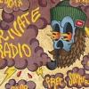 Private Radio - 12 июля FREE SUMMER GIG