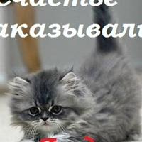ТанечкаЯклева