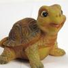 """""""Черепашарий"""" - коллекция черепах"""