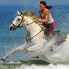 Atlantika Horse Конные туры в Европе