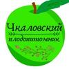 Чкаловский плодопитомник