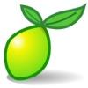 LimeSurvey - интернет опросы