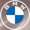 BMW Гранд Авто Тверь