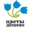 «Цветы Дёшево» Киров. Сеть магазинов цветов