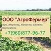 ООО АгроФермер