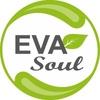 EVAsoul Профессиональная химия 8(383)375-51-50