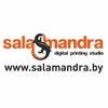 Студия цифровой печати Salamandra