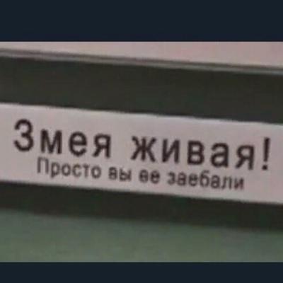 Виктория Хорешко