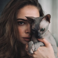 АлевссияШофман
