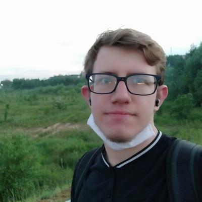 Виталий Бойко, Гомель