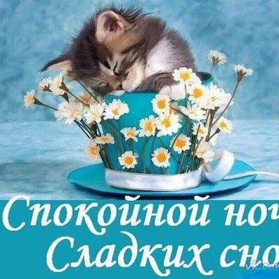 Зиля Зайнутдинова, Уфа