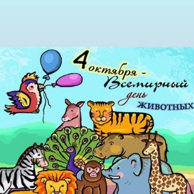 Ирина Ерёменко, Алматы