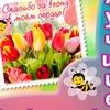 Поздравления, даты, открытки, подарки от пчёлки
