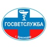 Управление ветеринарии | Краснодар