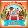 Центр Боевых Искусств  Череповец ЦБИ