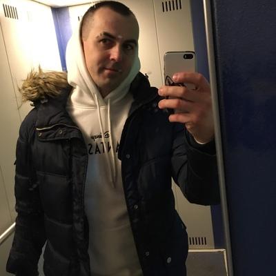 Александр Макаревич, Снегири