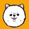 GROOM • Стрижка собак и кошек • Груминг СПб