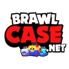 Brawl Case