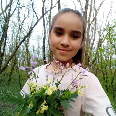 Диана Мондрейкина