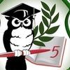 Media five school