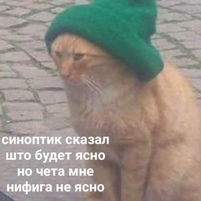 Никита Севостьянов