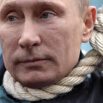 Владимир Путин, Архангельск