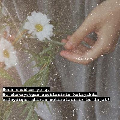 Tadjibayeva Nilufar