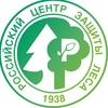 Центр защиты леса Республики Тыва