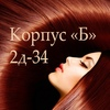 Парики Садовод ТЦкБ 2Д-34
