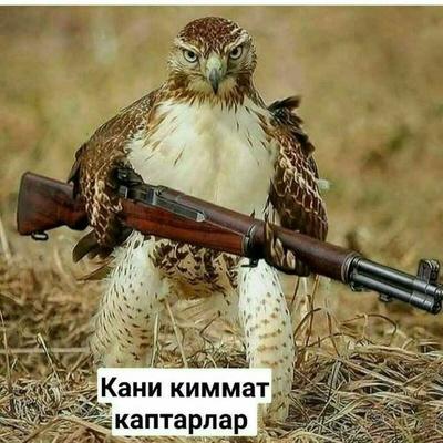 Xxxx Xxxxx, Ташкент