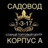 Dilshod Safarov 1-3-17
