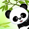 PandaWear.ru