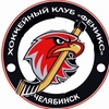 Детская хоккейная школа Феникс