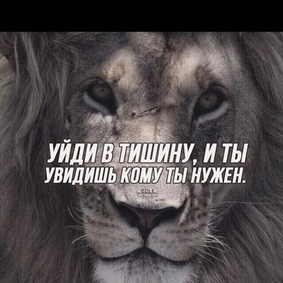 Дима Карпав
