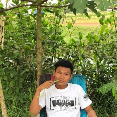 Nattaphong Duangjam