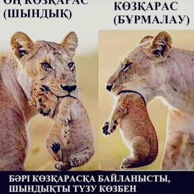 Akilbai Abdikerov, Кызылорда