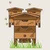 Пчелопарк «Слобожанщина»