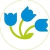 «Цветы Дёшево» | Сеть магазинов цветов